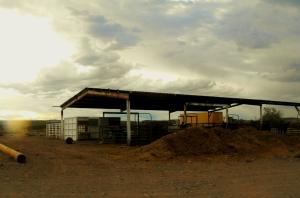 Hay Farm 2012-07-10 009 (1024x676) (1024x676)